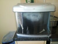 Fish tank with filter and pump