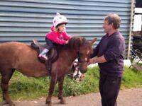 Michael, 11.2 lead rein pony
