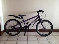 Frog bike, 52, purple