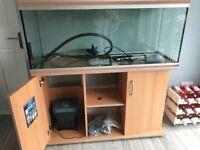 187 litre fish tank