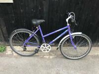 Raleigh Calypso Ladies Mountain Bike. Serviced, Free Lock, Lights, Delivery