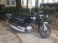 Yamaha YBR125 newly serviced Learner Legal motorbike