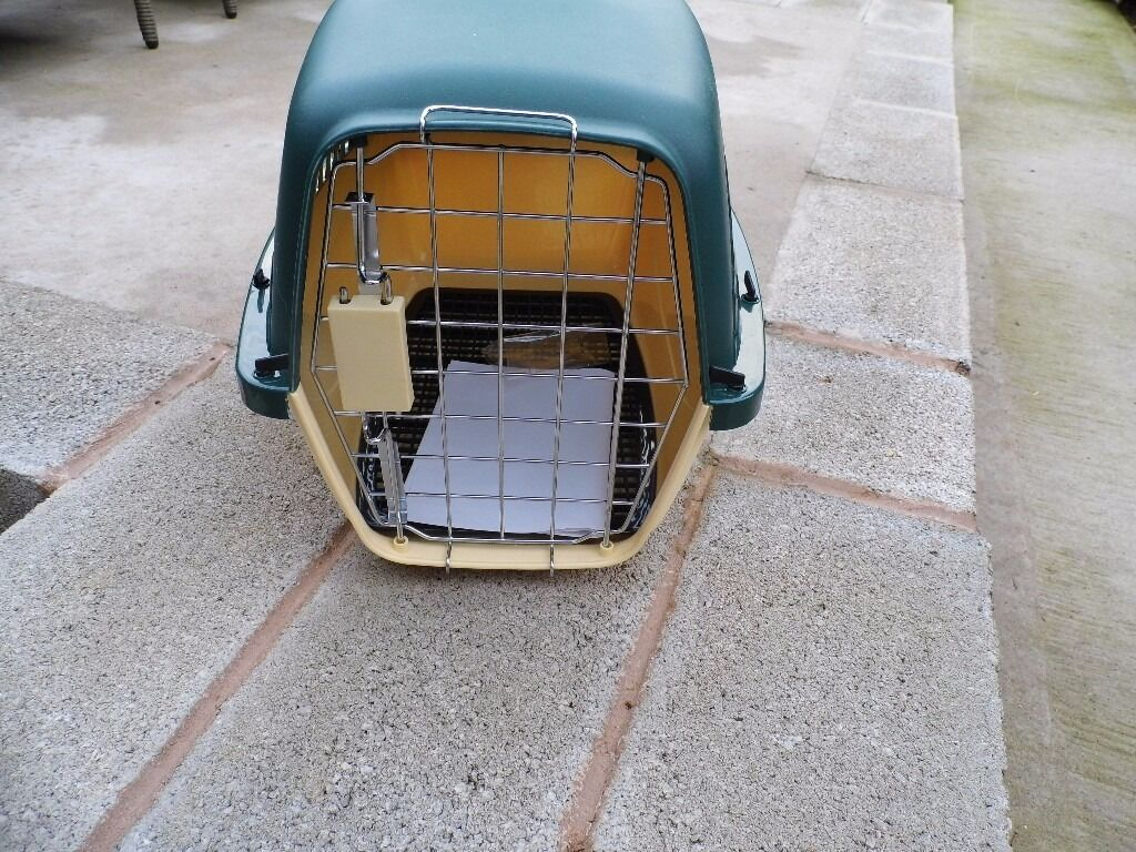 new cat basket with double lock system