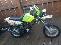X2 50CC MOTORBIKES ** MONKEYBIKE ** PITBIKE