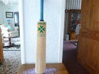 cricket bat signed