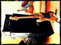 Bass full stack Trace Elliot Peavey Laney