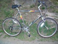 Peugeot Bicycle - 1980's Classic Retro Mountain Bike