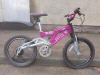 Raleigh Mega Max bike
