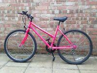 Apollo Lady Bike