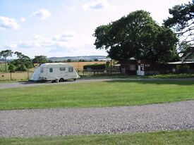 Swaynes Firs Camp site pitch available to let soon