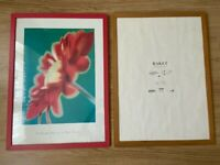 MICHAEL BANKS RED DAISY PAINTING flower ikea blank picture frame photo 50x70cm