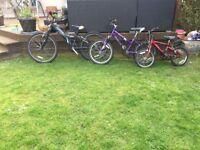£10 bikes