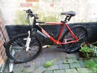 mans mountain bike for sale