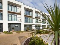 Contemporary Holiday home by the sea in Torquay, Devon
