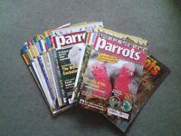 Parrot Magazines.