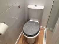 White toilet with silver sparkly toilet seat