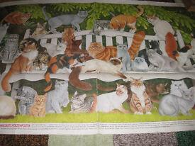 PEDIGREE CATS POSTER