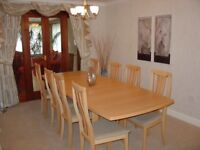 Maple finish extending dining table and 8 chairs all in excellent condition