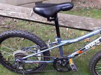 Apollo Chaos Bike 20 inch
