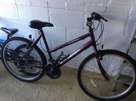 Ladies Raleigh Mountain Bike Reduced