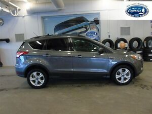 2014 Ford Escape SE (Remote Start  Bluetooth  Back Up Camera)