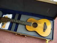 Martin 10-String T-18 Tiple 1926