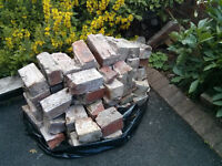 Pile of clay bricks free to a good home