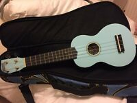 Ukulele - and super case. Excellent condition as seldom used