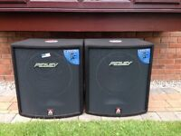 Peavey HISYS 115RX x fab bass bins