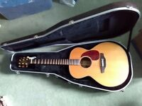 Takamine six-string acoustic guitar in hard case