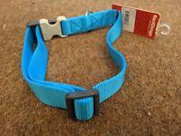 FREE large dog collar, blue