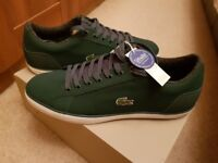 Lacoste trainers brand new size 11