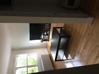 4.5 (1 bedroom) available ASAP