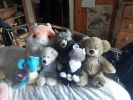 Bulk pack of teddies for £50