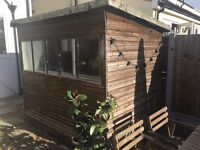 Shed 7x5 foot - includes electrics - FREE to a good home!