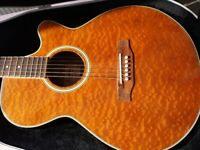 Jasmine by Takamine electro acoustic guitar and Takamine case