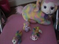 Palce pets with 1 baby plus 2 differnt babys