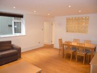 Spacious Newly Decorated LG 3 Double Bedroom, 2 Bathroom-Private Patio in Affluent Marylebone