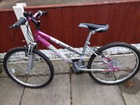 Silver and pink 18 speed girls bike - well cared for, good condition