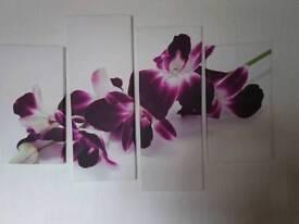 Purple orchids on white canvas
