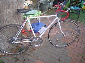 vintage o brien mens road bike