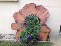 Natural Wooden Disc Garden Feature