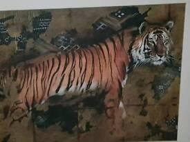 Tiger photographs (Make an offer)