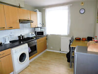 Large Ground Floor Two bedroom Apartment next to Gipsy hill station