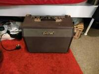 Acoustic and vocal amp