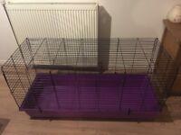 Purple rabbit cage