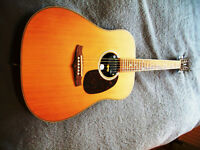 Tanglewood TW28 SNN, and Schaller Acoustic Pick-Up, Bargain!!
