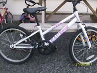 GIRLS APOLLO 20INCH WHEELS