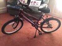 Tulsa Free Spirit 5 Speed Bike