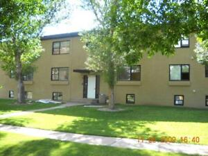 Free Early Move-In Until April 30! - Newly Renovated Scenic...